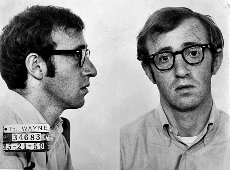 woody allen essays in honor of his birthday enjoy these essays from the woody allen