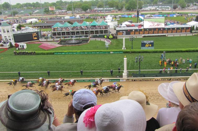 2013_Kentucky_Derby_field
