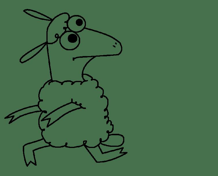 run_sheep