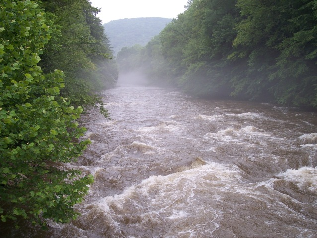 Cranberry_River_West_Virginia