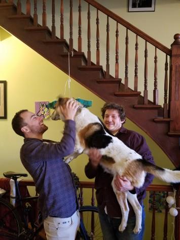Los tres perros de Pilsen