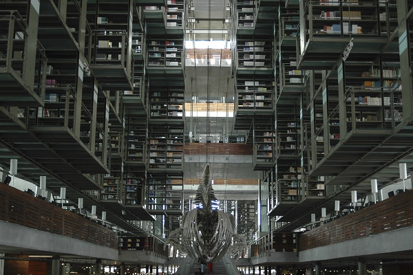 Biblioteca_Jose769_Vasconcelos-1.jpg